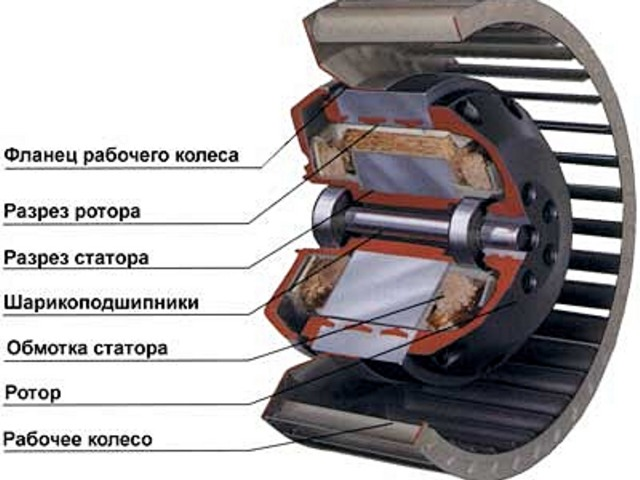 stroenie-dvigatelya ротор и статор в двигателе