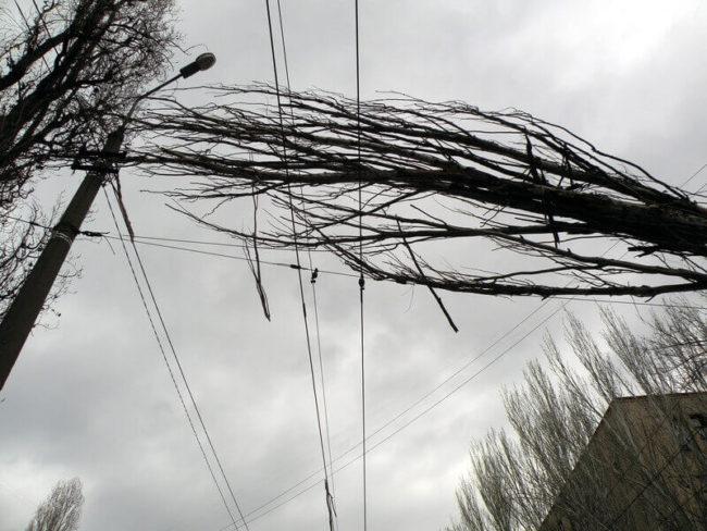 падение дерева на провода